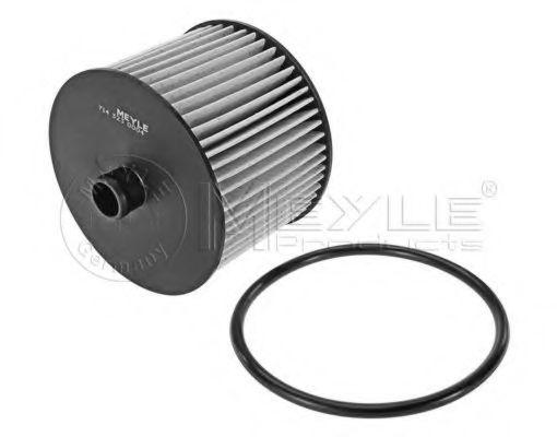Фильтр топливный Fiat Scudo/Citroen Jumpy/Peugeot Expert 2.0JTD/HDI 07-  арт. 7143230004