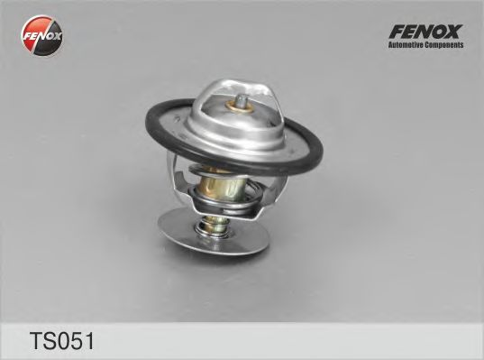 Термостат FENOX TS051