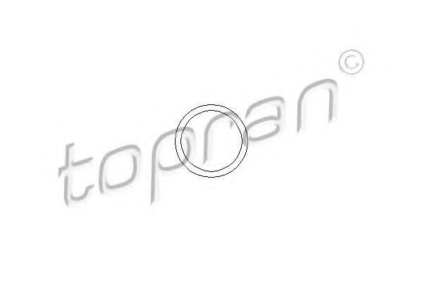 Прокладка фланца радиатора Кольцо уплотнительное HANS PRIES арт. 104505