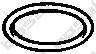 Уплотнительное кольцо, труба выхлопного газа  арт. 256269