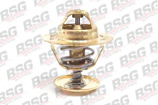 Термостат Transit -00 88C BSG BSG30125004