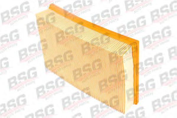 Фильтр воздушный Transit 2.4TDCi 06-/Transit (V184) 00-06  арт. BSG30135004